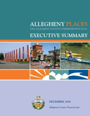 Allegheny Places Executive Summary
