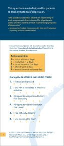 Patient Survey to Track Symptoms of Depression - Abilify - Page 2