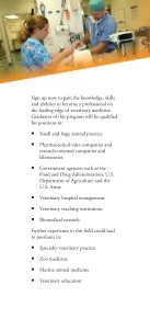 Veterinary Technology - Page 3