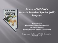 Status of NDOW's Aquatic Invasive Species (AIS) Program - Nevada ...