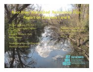 Root River Watershed Restoration Plan: Chapters I and II