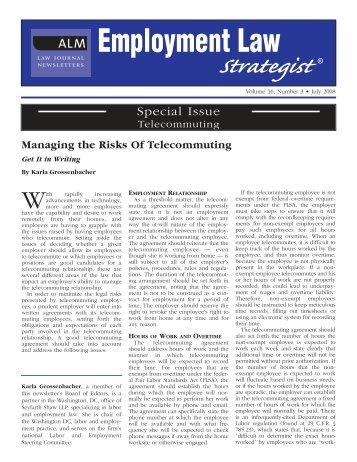 Employment Law Strategist - Seyfarth Shaw LLP