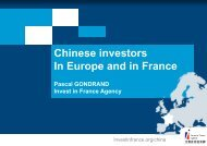 Chinese investors In Europe and in France Pascal GONDRAND ...
