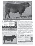 PETERSON ANGUS - Sioux Falls Regional Livestock - Page 4