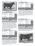 PETERSON ANGUS - Sioux Falls Regional Livestock - Page 5