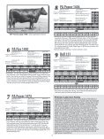 PETERSON ANGUS - Sioux Falls Regional Livestock - Page 6