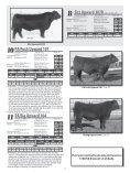 PETERSON ANGUS - Sioux Falls Regional Livestock - Page 7