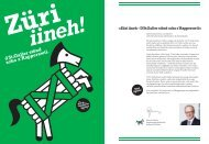 Magazin Kanton St.Gallen am Sechseläuten 2013 (2054 kB, PDF)