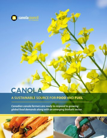 a sustainable source for food and fuel - Canola Council of Canada