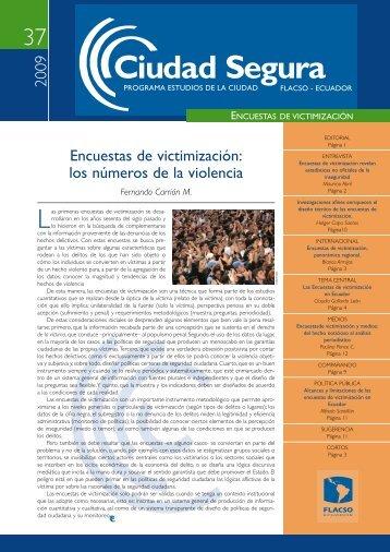 2009 Encuestas de victimización: los números de la ... - Flacso Andes