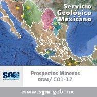 5 - Servicio Geológico Mexicano