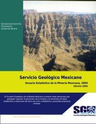 2004 - Servicio Geológico Mexicano