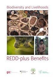 REDD-plus Benefits - Convention on Biological Diversity