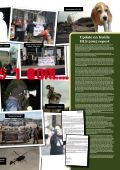 SHAC newsletter 43 - SHAC >> Stop Huntingdon Animal Cruelty - Page 5