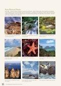 Bagian 4 – Australia kini - Australian Citizenship - Page 3