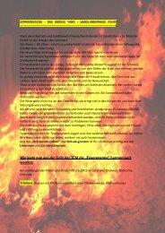 Newsletter Sommer 2009 Wandlungsphase Sommer - Shaolin ...