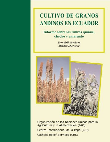 CULTIVO DE GRANOS ANDINOS EN ECUADOR - Share4Dev.info