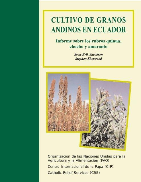 Cultivo De Granos Andinos En Ecuador Share4dev Info