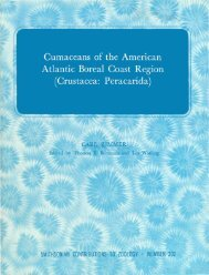 Cumaceans of the American Atlantic Boreal Coast Region ...
