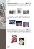 Ausgabe 2 / 2013 - Seite 4