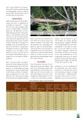 Hjorteskadar på ung furuskog - Skog og landskap - Page 2
