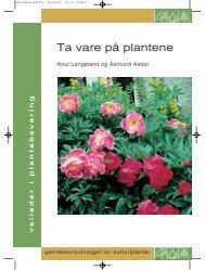 Ta vare på plantene - Plantearven - Skog og landskap
