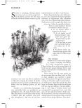 Ta vare på plantene - Plantearven - Skog og landskap - Page 4
