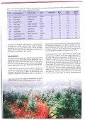 Fjelledelgran - Skog og landskap - Page 2