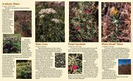 noxious weeds.p65 - County of San Luis Obispo