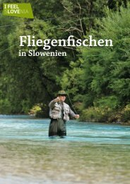 in Slowenien - Slovenia