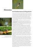 in Slowenien - Slovenia - Seite 3
