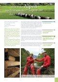 Von den Alpen bis zur Adria ein Jahrhundert nach der ... - Slovenia - Page 4
