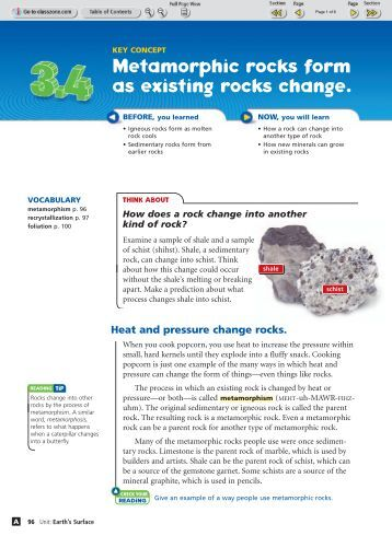 Metamorphic Rock Worksheet What Do You Remember About The Cell