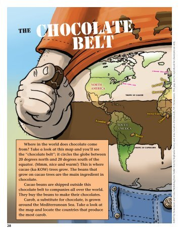 The Chocolate Belt