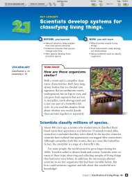 Scientists develop systems for classifying living things.