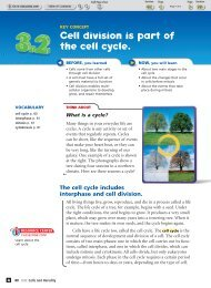 (3.2) Cell division is part of the cell cycle. - Durant Road Middle School