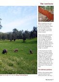 Eco Tourism 03. The Route of Iberian Ham - Page 7