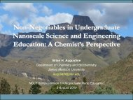 Non-Negotiables In Undergraduate Nanoscale Science And - NCLT