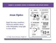 Atom Optics (PDF)