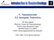 Nanomaterials - Inorganic Nanowires (PDF)