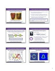 Nanoscale Optical Properties ( ) ( )