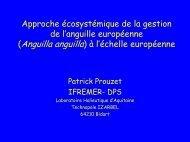 Biologie Exploitation et devenir de l'anguille Européenne - ifremer