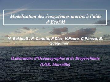 Modélisation des écosystèmes marins à l'aide d'Eco3M - ifremer