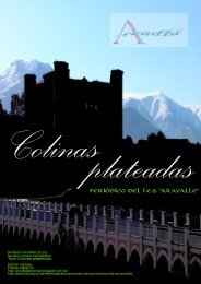 COLINAS PLATEADAS