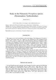Study on the Palaearctic Pristiphora species (Hymenoptera ...