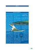 Naturschwimmbad Naturschwimmbad - Campingwirtschaft Heute - Seite 3
