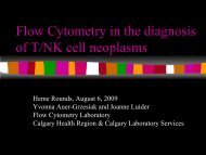 Flow Cytometry in the Diagnosis of T/NK Cell Neoplasms