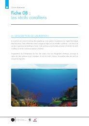 Fiche 08 : Les récifs coralliens