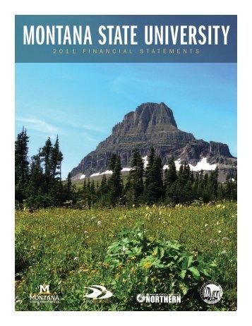 MSU Financial Statements FY11 - Montana State University