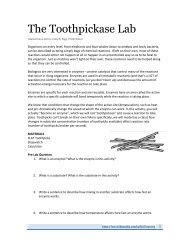The Toothpickase Lab
